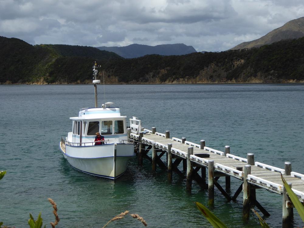 Te Pākeka/Maud Island  wharf