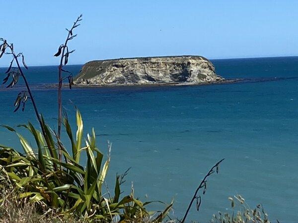 Motunau beach