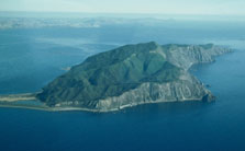 kapiti-island-223