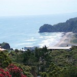 Autumn News from Te Wahi Ora, Piha