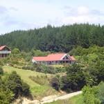 Waihoihoi Lodge and Studio