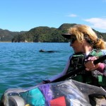 Sea Kayaking in Abel Tasman National Park