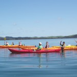 Kayaking trip for women in Bay of Islands
