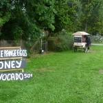 Taste New Zealand – the honesty box lives