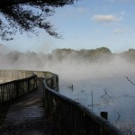 Hot Pools – swim all year round in NZ