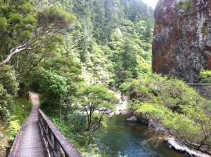 Through the Karangahake Gorge
