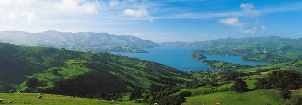 akaroa-harbour