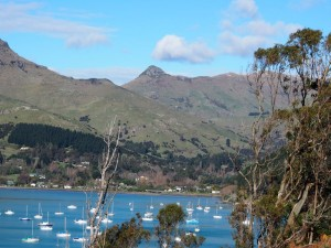 Parau Cove, Lyttleton Harbour