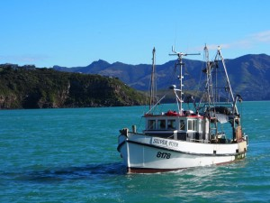 Fishing boat arrives at Diamond Harbour