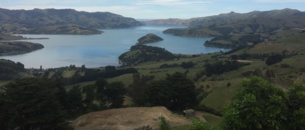 Akaroa harbour Banks Peninsula