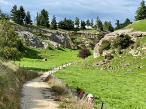 Duntroon to Oamaru on Alps2Ocean Cycle Trail