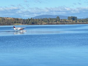 Te Anau one of the largest lakes in NZ