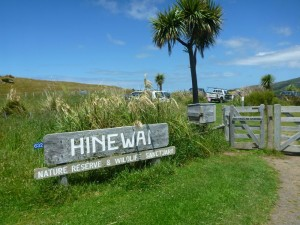 Hinewai the last night on the Banks Peninsula Track