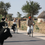 Love the NZ Rail Trails – now Cycle  India