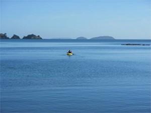 kayaking waiheke